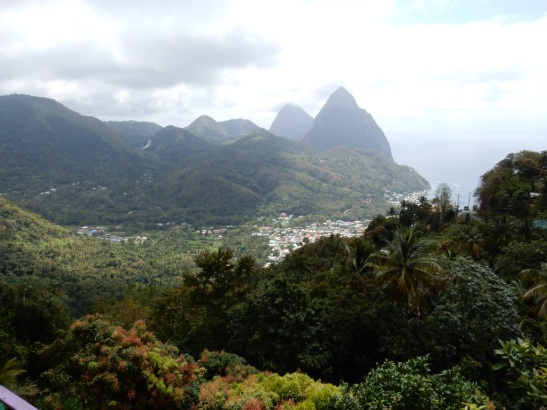 rainforest-round-town